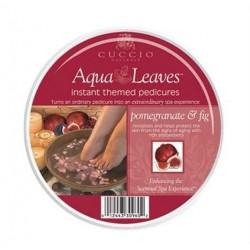 Aromatyczne liście wodne figa i granat